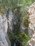 Le canyon Maligne 02