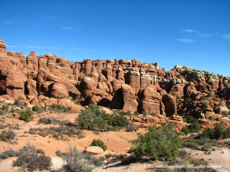Les Fiery Furnace