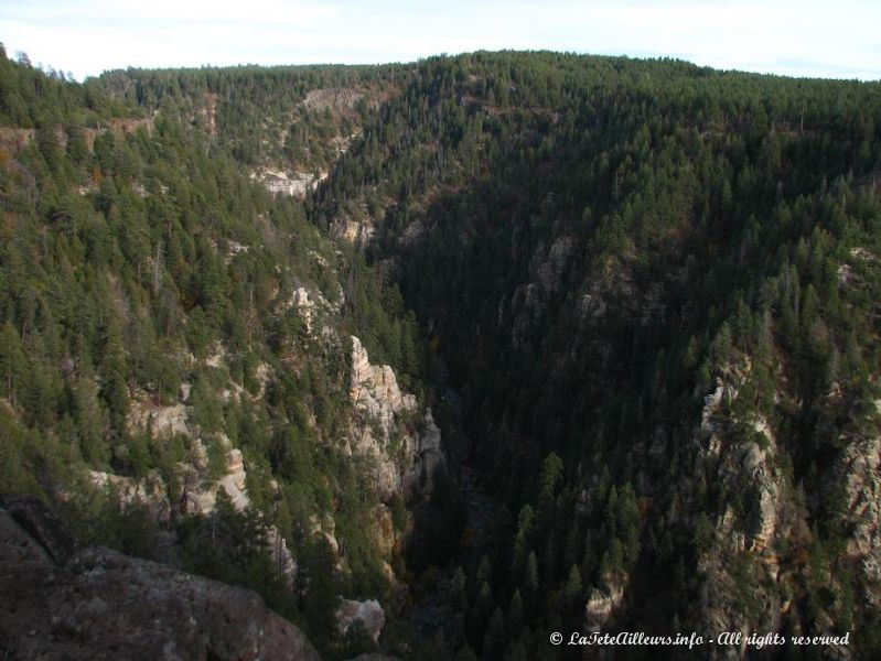 Le canyon vu du Oak Creek Vista Point
