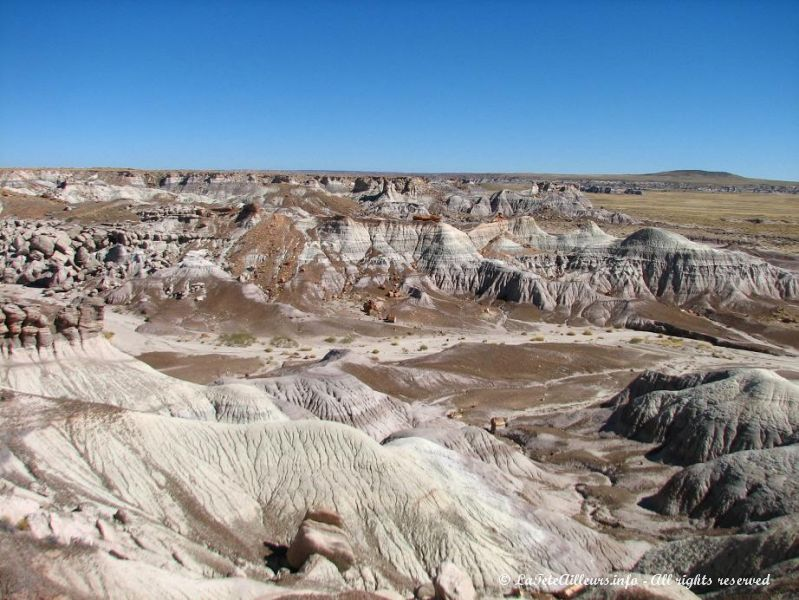 Paysage extraterrestre du Petrified Forest National Park