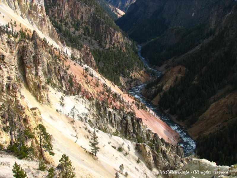 Les couleurs du canyon de Yellowstone  sont surprenantes