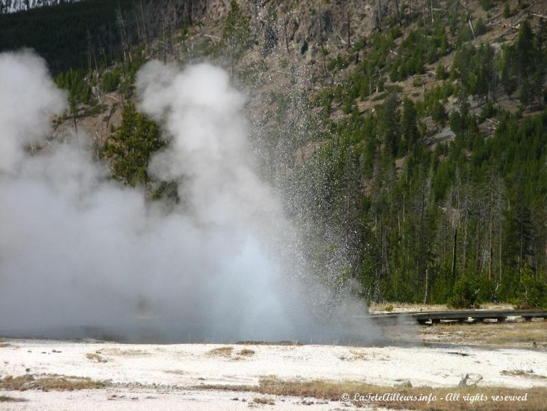 Jewel Geyser, au site de Biscuit Basin