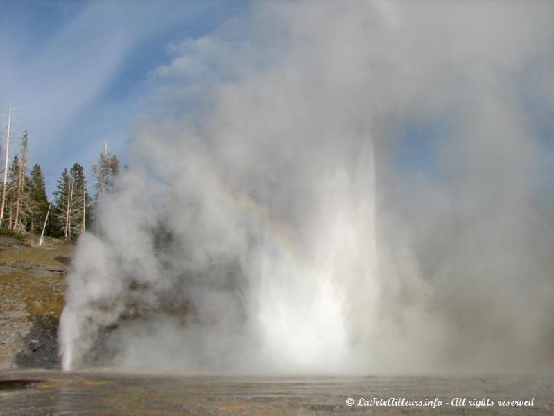 Grand Geyser en pleine eruption !