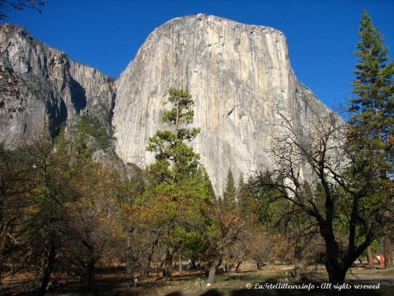 El Capitan, vertigineuse falaise du Yosemite National Park